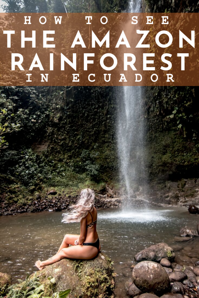 THE AMAZON RAINFOREST- This blog post will let you know what to expect and everything else you need to know for an Amazon Jungle excursion. #Ecuador is one of the best places to experience the #amazonrainforest. In #Banos, the rainforest is a short distance and makes it the perfect departure point! Overnight rainforest tours from Banos - Staying in the #amazon #rainforest in Ecuador. Ecuador travel tips | amazon travel tips | what to do in Ecuador | things to do in Banos | Banos day trips